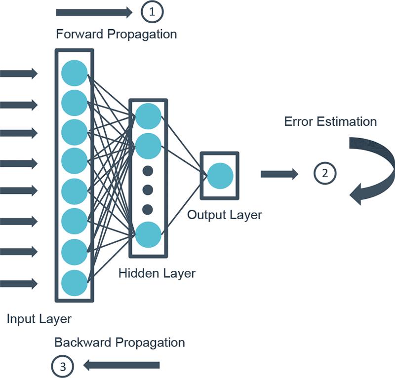 Forward backward propagation