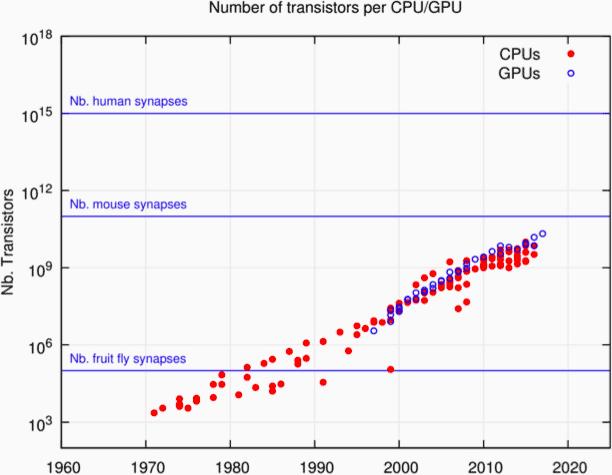 transistors per CPU